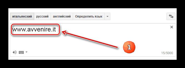 Ввод адреса сайта в левое окно в Google Translate